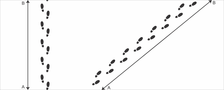 Linha reta e diagonal